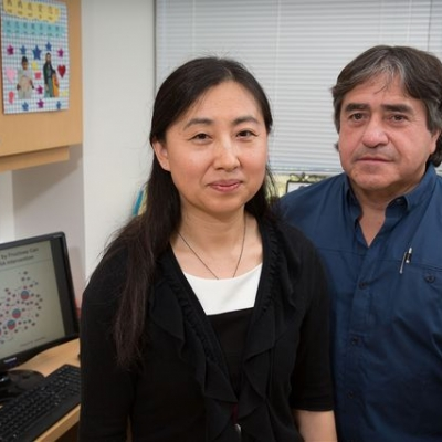 Professors Xia Yang and Fernando Gomez-Pinilla research featured in UCLA Newsroom