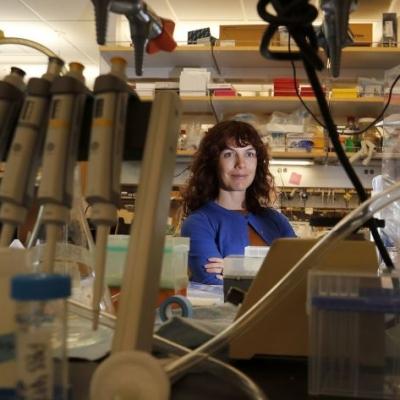 Professor Amy Rowat featured in the LA Times