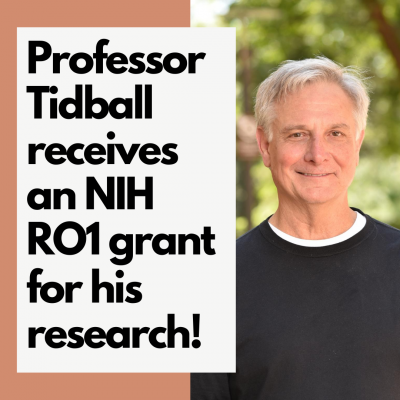 Professor Tidball receives an NIH RO1 grant for his research