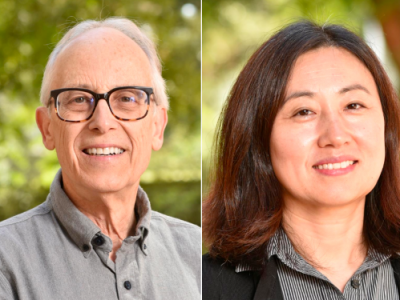 Professors Scott Chandler and Xia Yang publish a new scientific paper in Neurobiology of Disease!