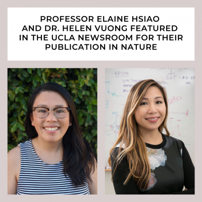 """Professor Elaine Hsiao and Dr. Helen Vuong featured in the UCLA Newsroom for their publication in """"Nature"""""""