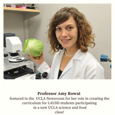 Professor Amy Rowat featured in the  UCLA Newsroom
